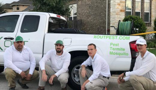 Pest Control Austin Texas