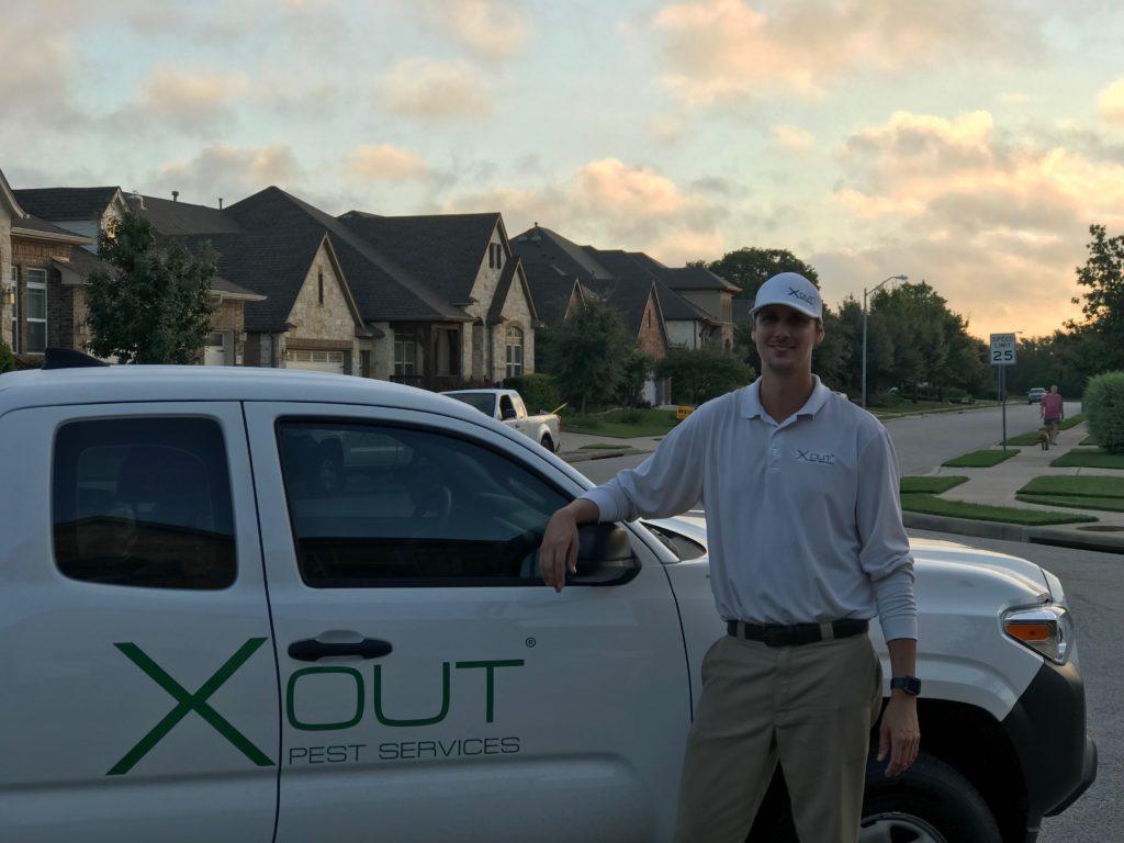 Pest Control in Austin