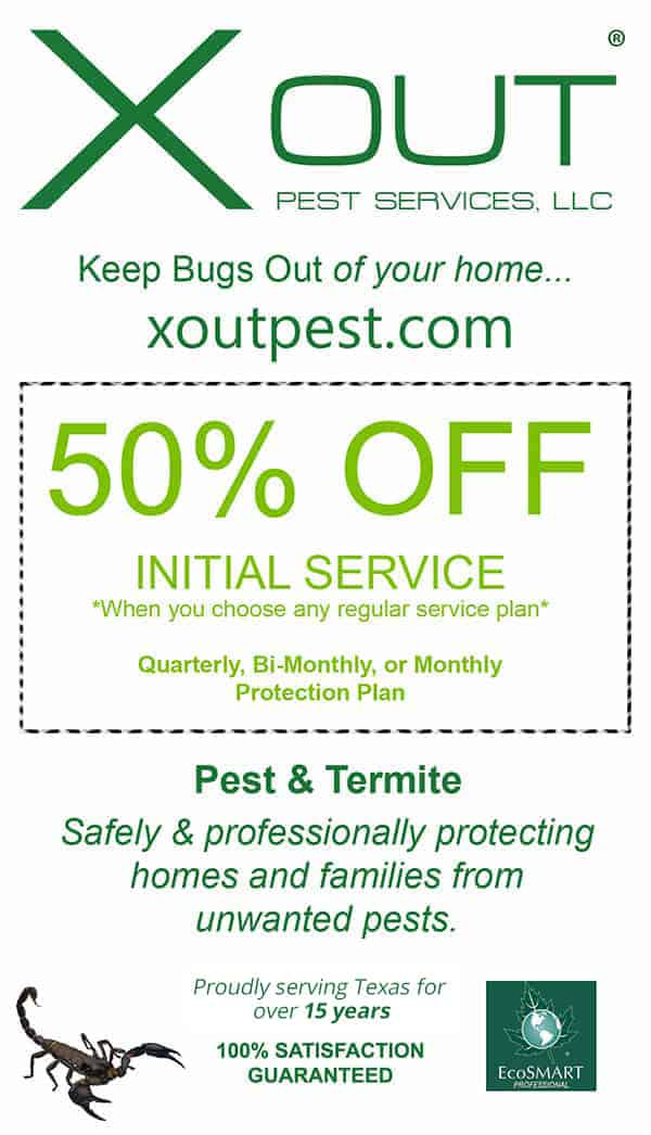 Pest Control Discount Flyer